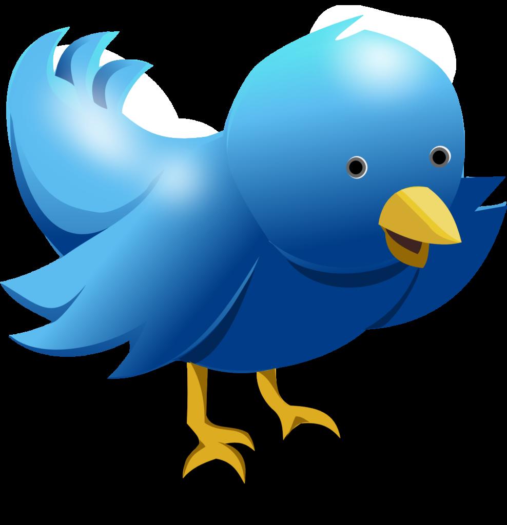 Twitter - Evade los seguidores no deseados 02