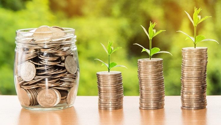 Startup-SEO o Posicionamiento Web-Crecimiento Economico